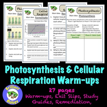 Photosynthesis & Cellular Respiration Bell Ringers, Exit S