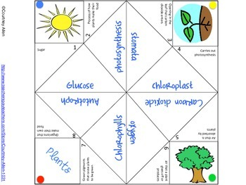 Photosynthesis Cootie Catcher