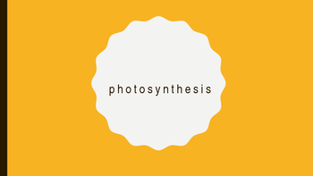 Photosynthesis Diagram Labels