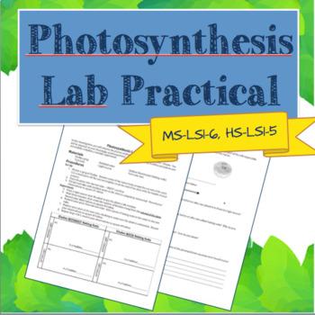 Photosynthesis Lab Practical Quiz
