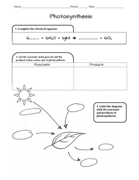 Photosynthesis NGSS Scaffolded Worksheet