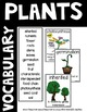 Photosynthesis Lesson and Activities