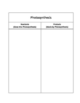 Photosynthesis Manipulative Cards