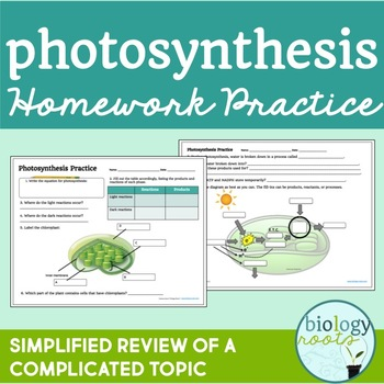 Photosynthesis Homework Practice