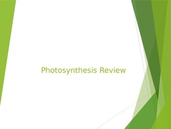 Photosynthesis Review PowerPoint
