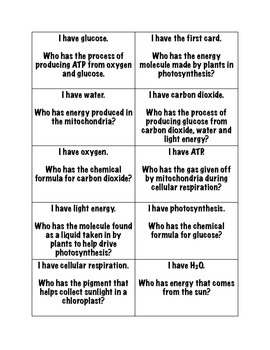 """Photosynthesis and Cellular Respiration """"I have, who has?"""" Game"""