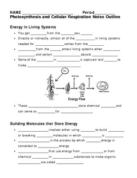 Printables Cell Respiration Worksheet photosynthesis cellular respiration worksheet davezan