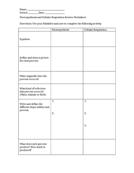 Photosynthesis and Cellular Respiration Review Worksheet