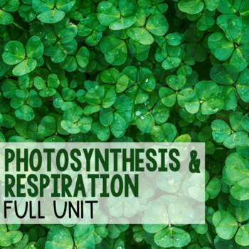 Photosynthesis and Respiration BUNDLE!
