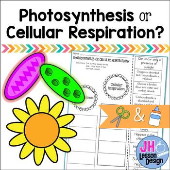 Photosynthesis or Cellular Respiration? Cut and Paste Sort