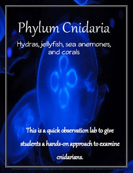 Phylum Cnidaria: Hydras,Jellyfish, Sea anemones, and Corals