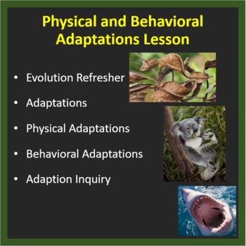 Physical & Behavioral Adaptations: Increasing an organisms