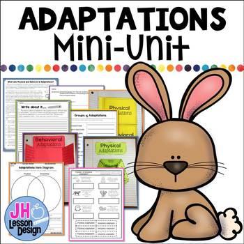 Physical and Behavioral Adaptations: Mini-Unit