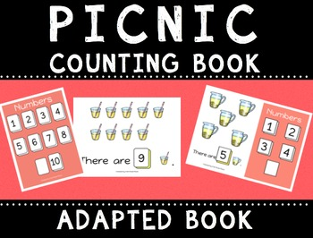 Picnic Counting Books (Adapted Books)