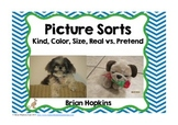 Picture Sorts by Kind, Color, Size, and Real Vs Pretend