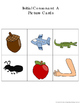 Picture/Sound/Word Sort Cards: Alphabet or Initial Sounds