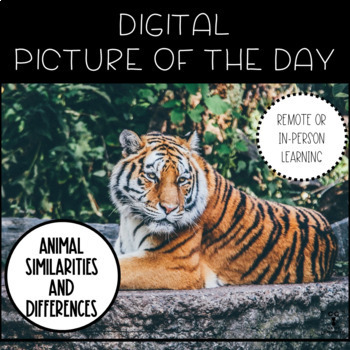 Picture of the Day- Animal Similarities and Differences