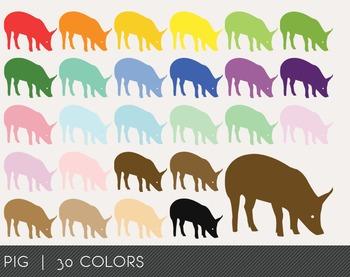 Pig Digital Clipart, Pig Graphics, Pig PNG, Rainbow Pig Di