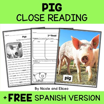 Close Reading Pig Activities