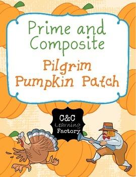 Pilgrim Pumpkin Patch Prime and Composite Maze