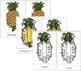 Pineapple Nomenclature Cards
