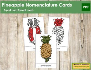 Pineapple Nomenclature Cards - Red