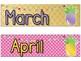 Pineapple Theme Classroom Calendar Headers and Numbers