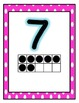 Pink Polka Dot Number Line 0-20 with 20 Frames!