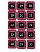 Pink and Black Leopard Calendar #s