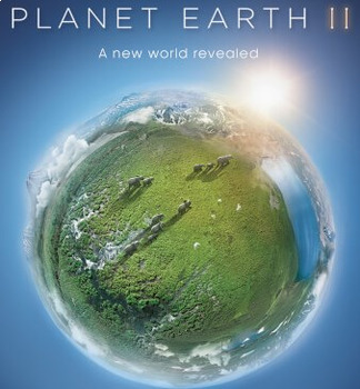 Planet Earth II: Islands Video Worksheet, Wordsearch, and