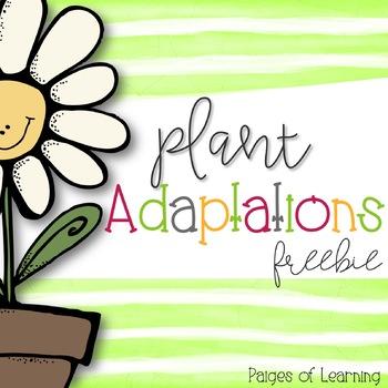 Plant Adaptation Freebie