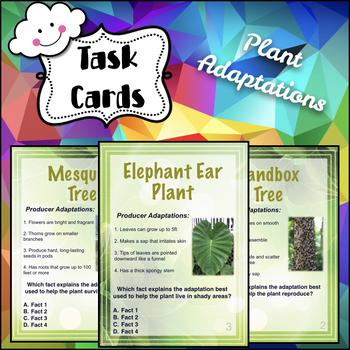 Plant Adaptation Task Cards