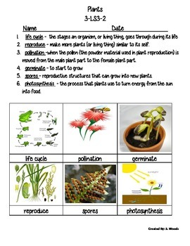 Plant & Animal Vocab. Set - Fusion Science Unit 3 - NGSS L
