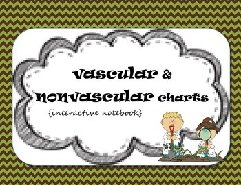 Plant Classification {vascular and nonvascular-interactive
