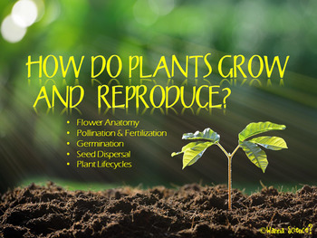 Plant Growth, Reproduction and Life Cycle Lessons with Int