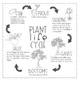Plant Interactive Notebook
