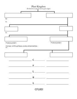 Plant Kingdom Review Flow Chart