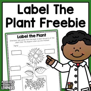 Plant Labeling Worksheet - Freebie