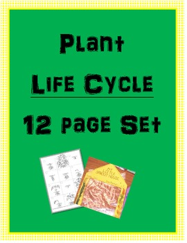 Plant Life Cycle - 12 page set
