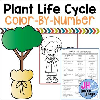 Plant Life Cycle: Color-By-Number