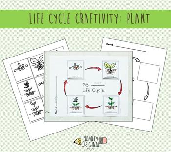 Plant Life Cycle Craftivity
