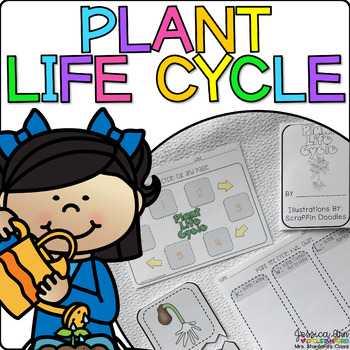 Plant Life Cycle {From Seed to Plant: a Non-Fiction Themat