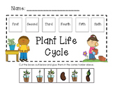 Plant Life Cycle In Order