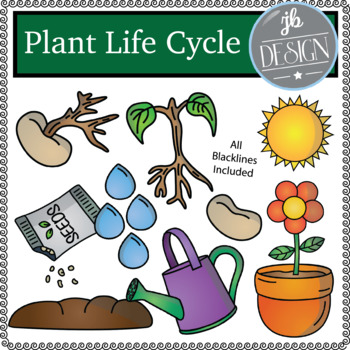 Plant Life Cycle (JB Design Clip Art for Personal or Comme