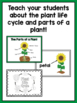 Plant Life Cycle and Parts of a Plant Unit for PreK, Kinde