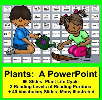Plant Life Cycle PowerPoint - 3 Reading Levels + 40 Vocabu