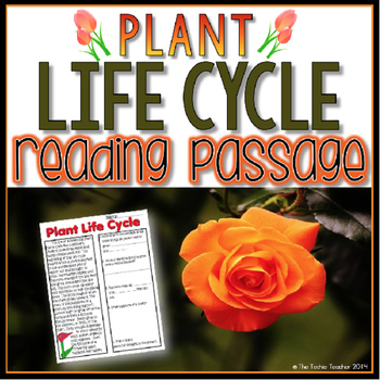 Plant Life Cycle Reading Passage