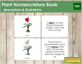 Plant Nomenclature Book