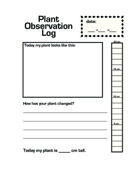 Plant Observation Daily Log