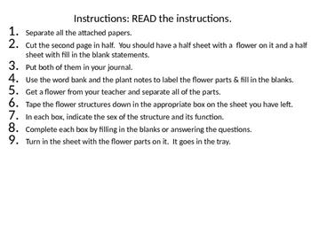 Plant Reproduction, Flowers
